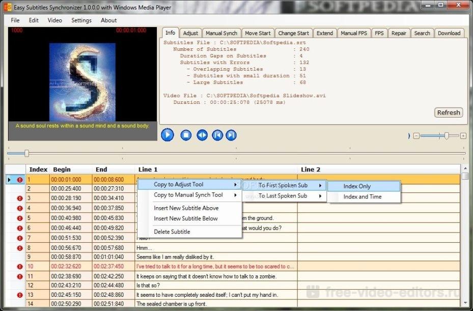 Интерфейс Easy Subtitles Synchronizer